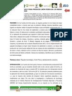 LIMON PERSA.pdf