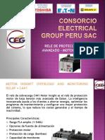 Presentación C441 CEGP.pptx