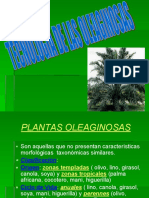 Clase 10.Ppt