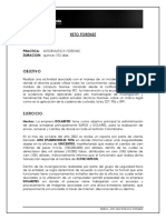 Reto Forense Universidad Piloto