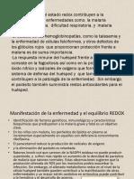 Manifestación de La Enfermedad y El Equilibrio REDOX
