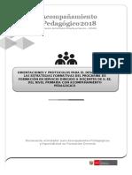 5 24mayo2018 Orientaciones Para El Acompañamiento Pedagógico y Protocolo Del Acompañante Pedagógico 2018