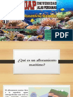 AFLORAMIENTO-MARINO.pptx