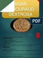 lab-expo-micro.pptx