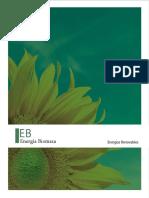 libro_energia_biomasa.pdf