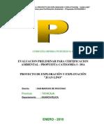Informe+Completo+Pumurgo