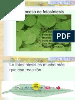 El Proceso de La Fotosintesis-1