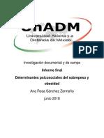 Informe Final u3 Ana s