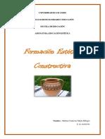 Trabajo Singular Formación Estética Constructiva