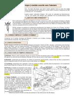 CALENDARIO LITURGICO.docx