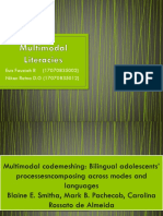 Multimodal Literacies