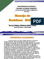 Digestion Anaerobia[1]