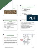 10 Agregados para concreto.pdf