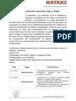 Etapas de Desarrollo Cognoscitivo- Piaget y Vygotsky