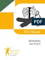 ATZ Info