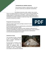Proceso Para La Obtención de Carbón Vegetal