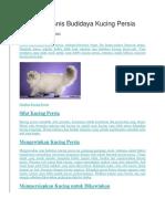 Ukses Berbisnis Budidaya Kucing Persia