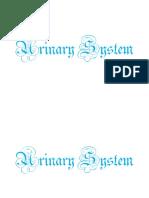 Urinary System 112814