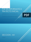 Introduccion a l Pnf Inf y Pst