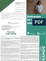 fllt_embarazo