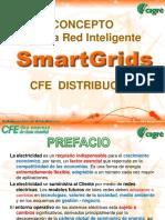 Concepto_Red_Inteligente_Benjamin_Sierra.pdf
