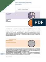 Practica 7 Morfologia tinciones Reporte