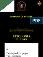 Leccion 16. Patologia Pulpar