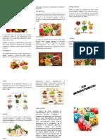 triptico micronutrientes
