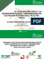 SEMINARIO II.pptx