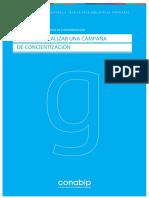 Guia para realizar una campaña de concientizacion.pdf