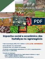 Situacao_da_olericultura.pdf