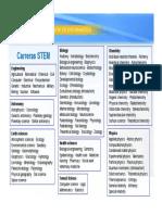stem.pdf
