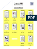 Progetto M6.5 - Elenco documenti pubblicati (al 25.09.2010)