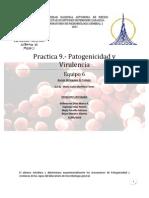 Practica 9 Patogenicidad y Virulencia -Reporte