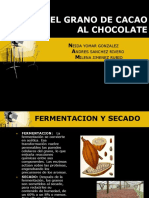 19203260 Proceso Del Cacao