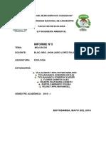 Informe de Moluscos, Caracol