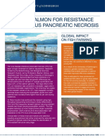 Breeding Salmon for Resistance to Infectious Pancreatic Necrosis