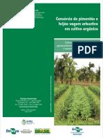 Consórcio de Pimentão e Feijão Vagem Arbustivo Em Cultivo Orgânico