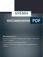 CA Anemia Nurita