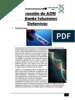 Extracción de ADN Mediante Soluciones Detersivas