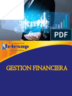 Gestion Financiera Maide 02
