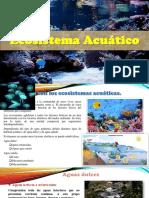 Ecosistema-Acuático