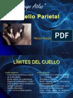 Cuello Parietal, Renzo