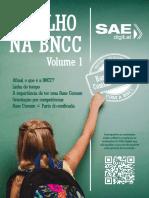 BNCC_V1