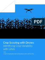 Crop Scouting With Drones