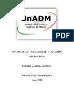 Investigacon Documental y de Campo Informe Final Word