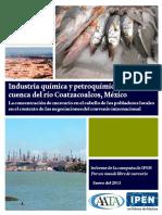 Reporte Mercurio en el Río Coatzacoalcos.pdf