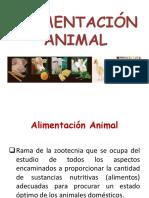CLASE 1 Generalidades