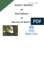 Tata Iron