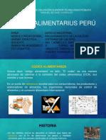 CODEX INTERNACIONAL Y EN EL PERÚ